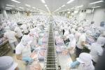 Áo công nhân chế biến thực phẩm may sẵn